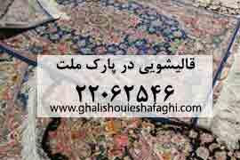 قالیشویی در محله پارک ملت