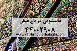 قالیشویی در محله باغ فیض